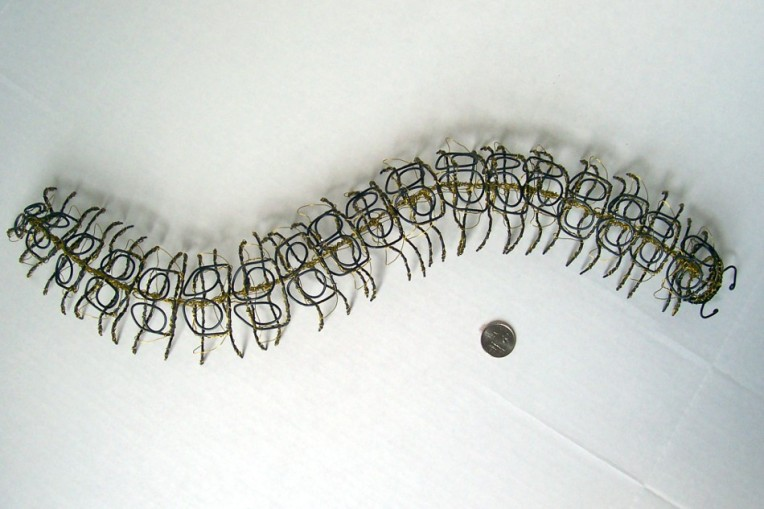 Armored Millipede