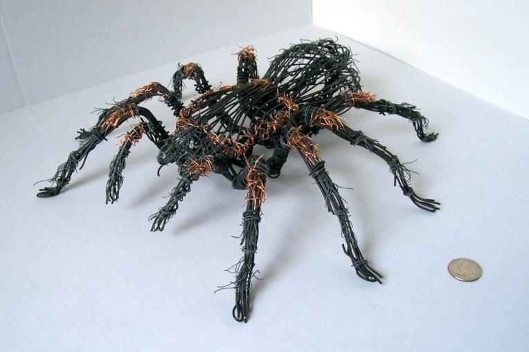 Tarantula 1