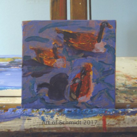 Canada Geese, Stage 1