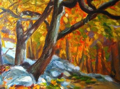 Catoctin Park Landscape