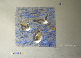 Stage 1 of my Canada Geese Painting starts with a simple color sketch in pastels to choose the color scheme.