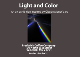 Light and Color Postcard