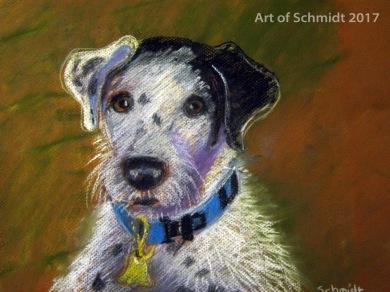 Jack Russell Terrier, Pastel on Paper, Jodie Schmidt, 2017.