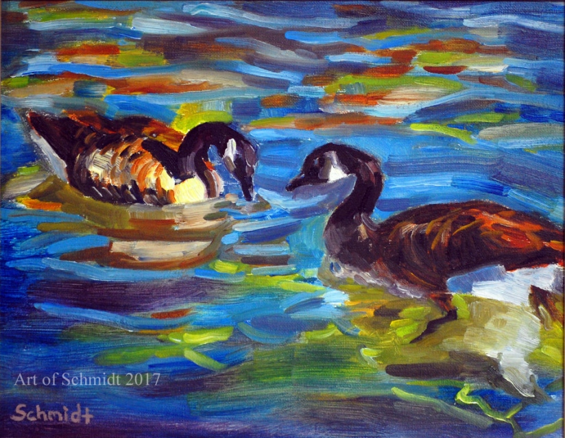 Canada Geese, Pair, Lake, Swimming