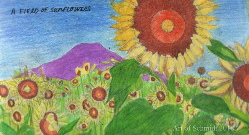 Sketchbook, sunflowers,edited 2
