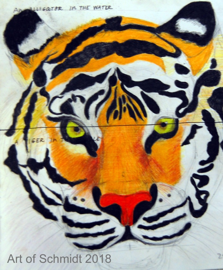 Tiger portrait, flat