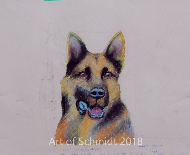 German Shepherd, pastel, flat, final