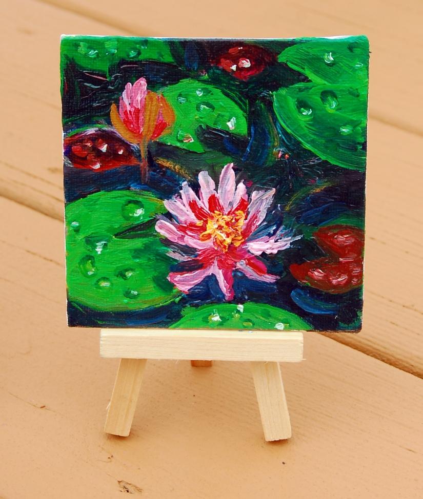 pink water lillies, flat